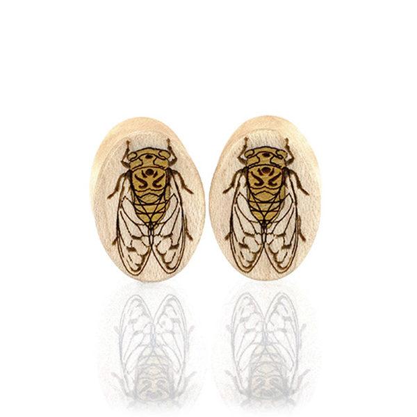 Cicada Ovals Custom Plugs