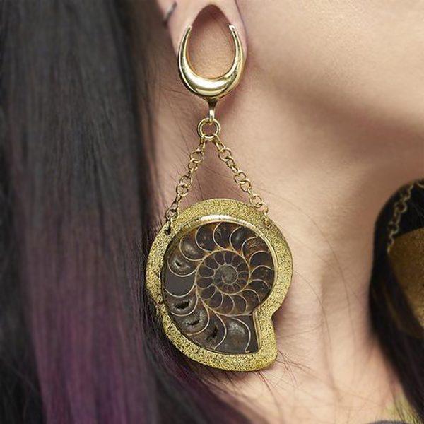 Fossil Ammonite Weights